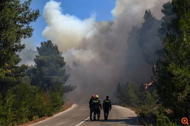 πυρκαγιά Εύβοια Αύγουστος 2019