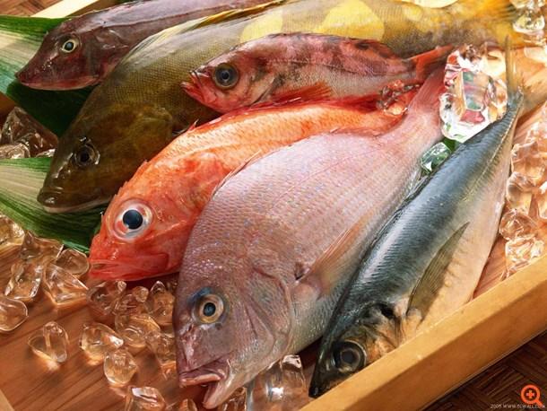 Ναι στο ψάρι, αλλά τι να προσέξουμε;