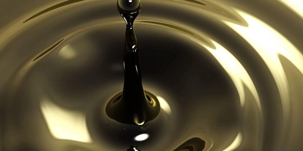 Σ. Αραβία: Πρόταση για μείωση των πετρελαϊκών αποθεμάτων