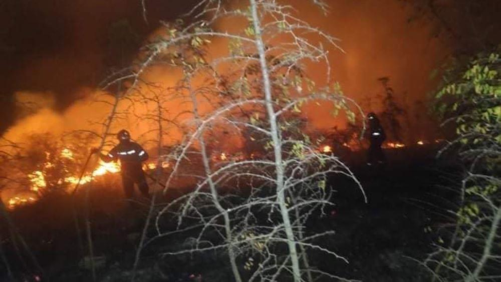Σε εξέλιξη η φωτιά στην περιοχή Κολοκυθάς στην Ηλεία - Σε ύφεση στην περιοχή Πουλίτσι Μεσσηνίας