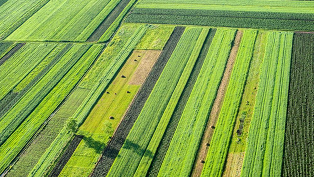 Χωρίς συμπληρωματικό ΕΝΦΙΑ τα αγροτεμάχια φέτος και το 2018