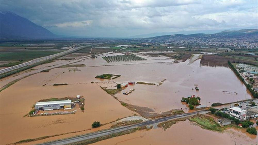 """Λαμία: Εκτεταμένες καταστροφές από το πέρασμα του """"Ιανού"""""""