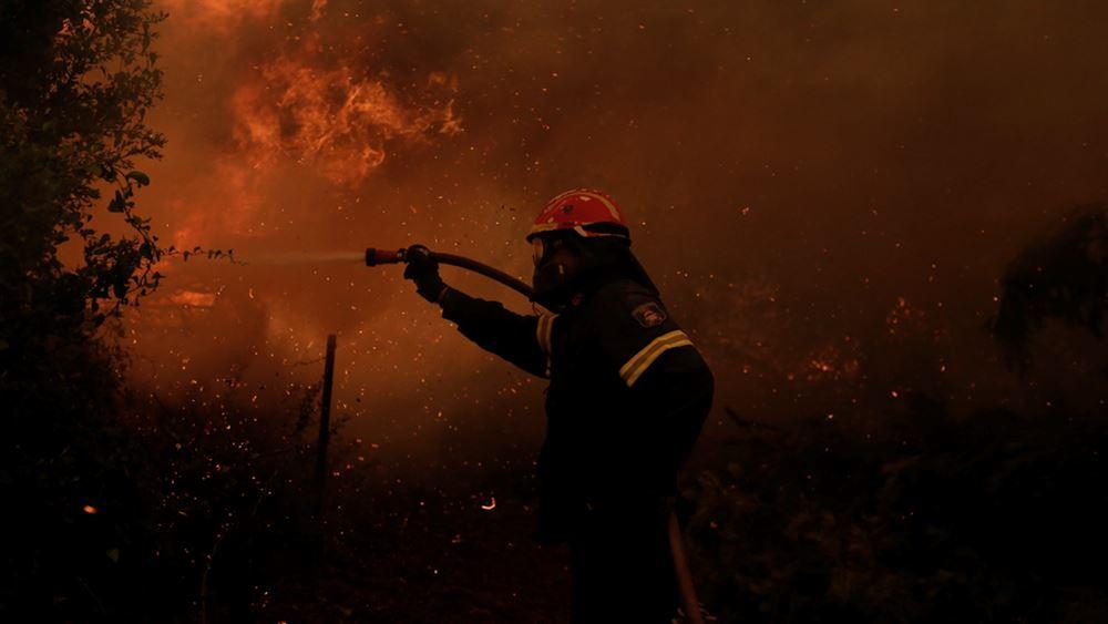 Μικρές ζημιές από το πέρασμα της φωτιάς από το Πευκί