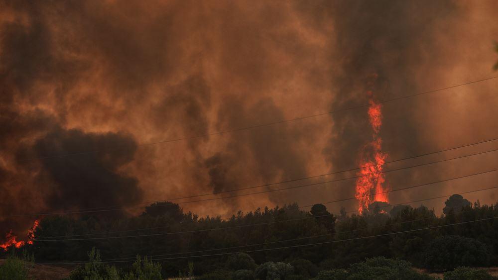Πυρκαγιές σε Μικροθήβες Μαγνησίας και Λογγίτσι Φθιώτιδας