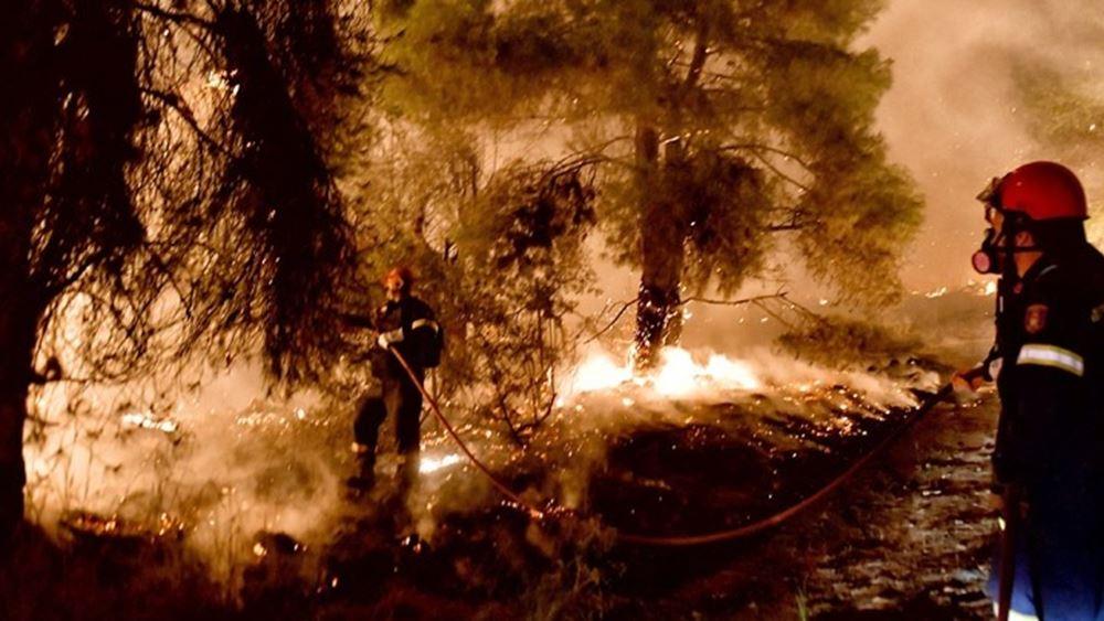 Η πυρκαγιά στα Γεράνεια Όρη ήταν η σημαντικότερη δασική της τελευταίας δεκαετίας