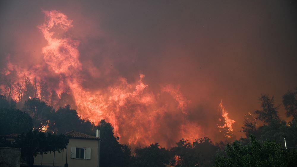 Νύχτα μάχης με τη φωτιά στην Εύβοια: Συνεχείς αναζωπυρώσεις στο μέτωπο των 11,5 χλμ