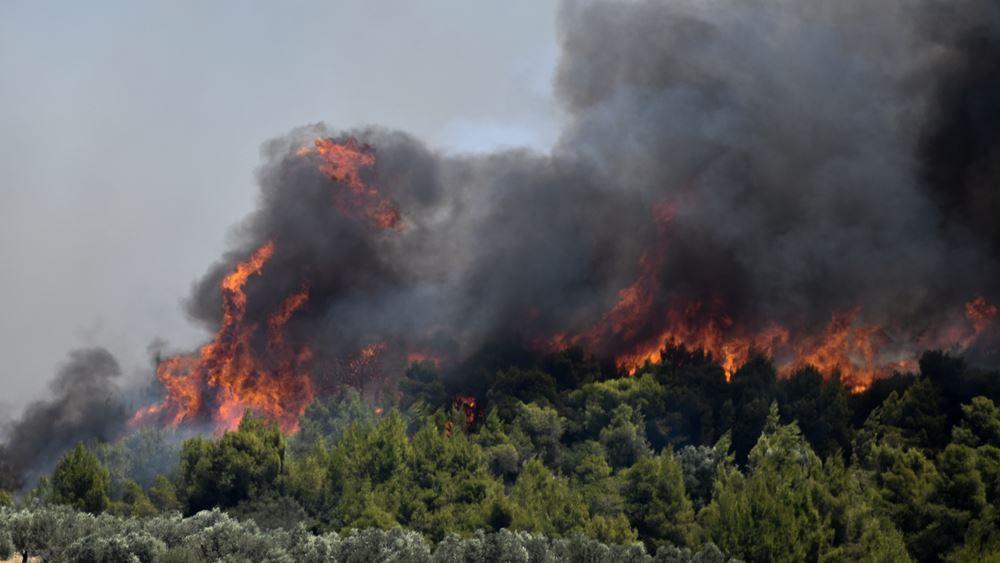 Φωτιά στις Κεχριές: ''Η κατάσταση δεν ελέγχεται'' λέει ο δήμαρχος