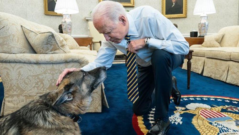 """ΗΠΑ: Το ζεύγος Μπάιντεν ανακοίνωσε τον θάνατο του """"πρώτου σκύλου"""" Τσαμπ"""