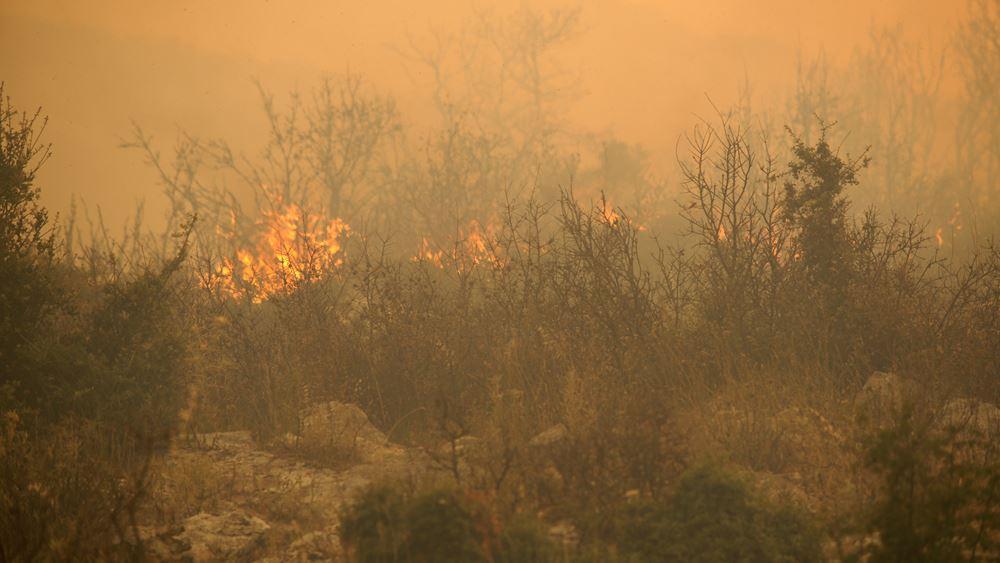 Δασικές πυρκαγιές σε Σουηδία - Νορβηγία λόγω ξηρασίας και υψηλών για την εποχή θερμοκρασιών