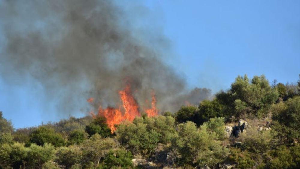 Πυρκαγιά σε δύσβατη περιοχή στην Ύδρα