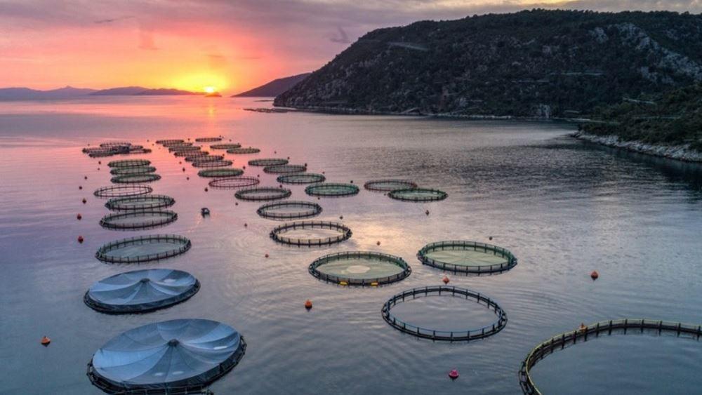 Περσεύς: Άσκησε το δικαίωμα εξαγοράς η Andromeda Seafood