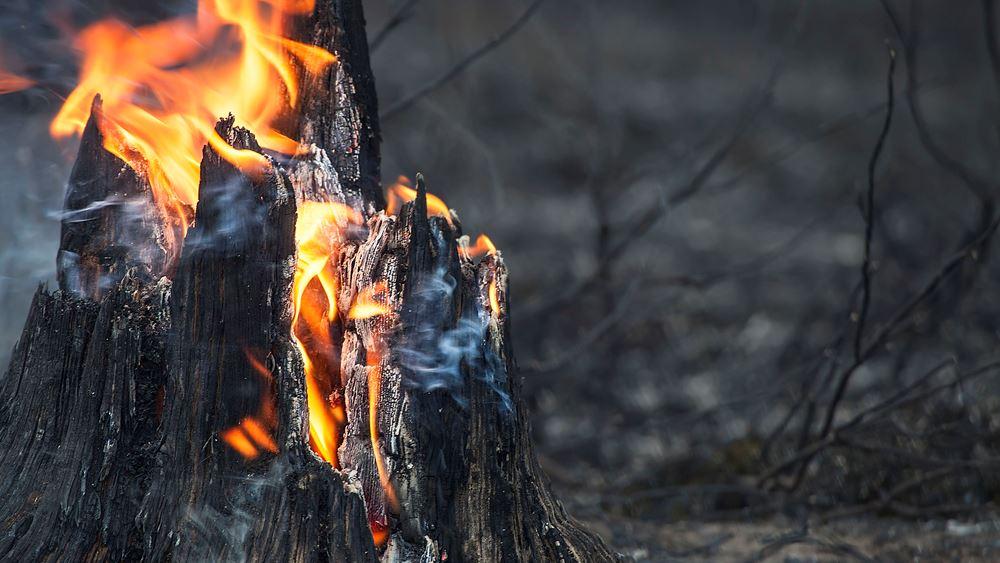 ΗΠΑ: Χιλιάδες άνθρωποι στο Όρεγκον αναζητούν καταφύγιο από τις φονικές πυρκαγιές