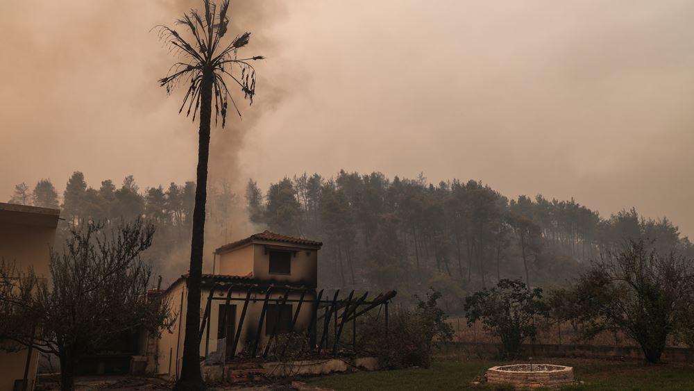 EFFIS: Περισσότερα από 1 εκατ. στρέμματα κάηκαν μέσα σε δύο εβδομάδες στην Ελλάδα