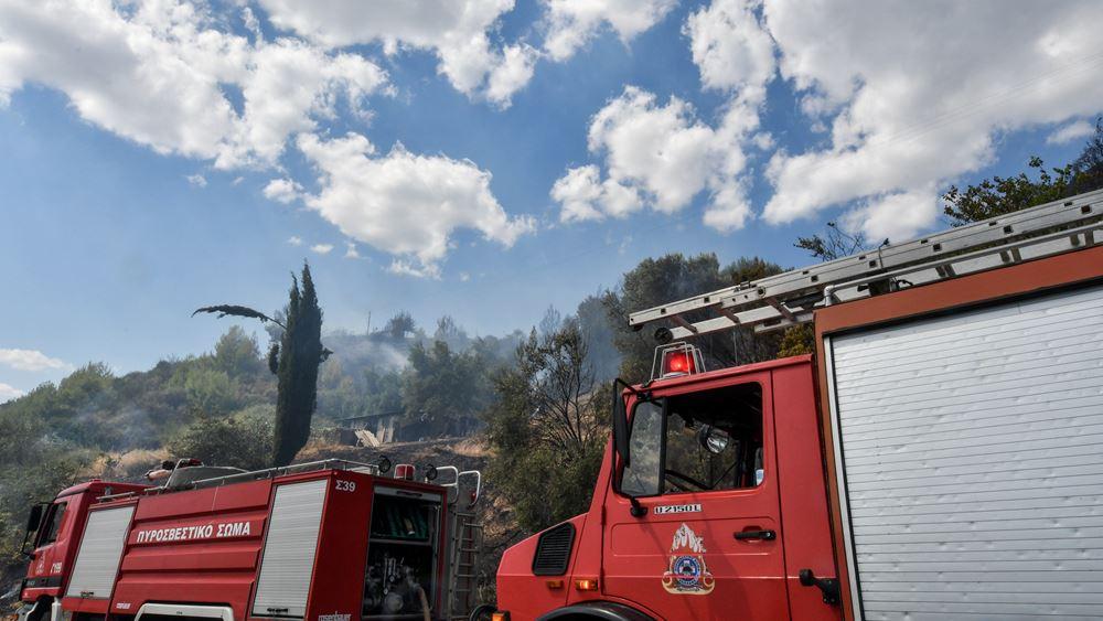 Ενισχύονται οι πυροσβεστικές δυνάμεις που επιχειρούν στο Γραμματικό Ηλείας