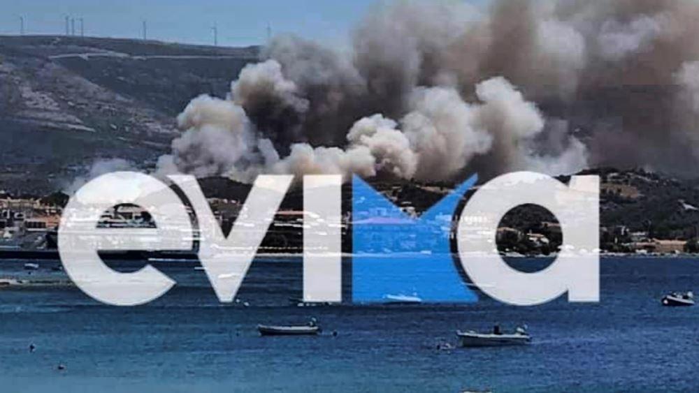 Εύβοια: Αισθητά βελτιωμένη η εικόνα στα μέτωπα της φωτιάς στα Στύρα