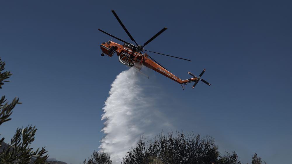 Πυρκαγιά σε δασική έκταση στους Ασβεστάδες Διδυμοτείχου