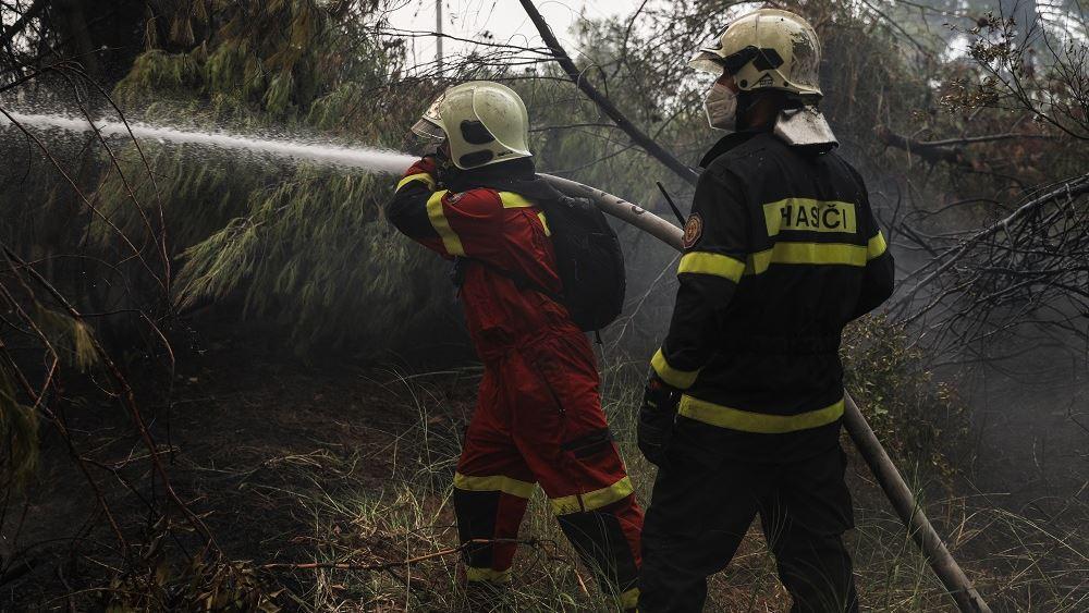 Πυρκαγιά στην περιοχή Δρυάλια Λακωνίας - Δεν απειλούνται κατοικημένες περιοχές