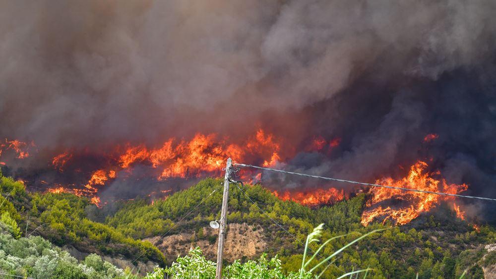 Μάχη με τις φλόγες στην Ηλεία