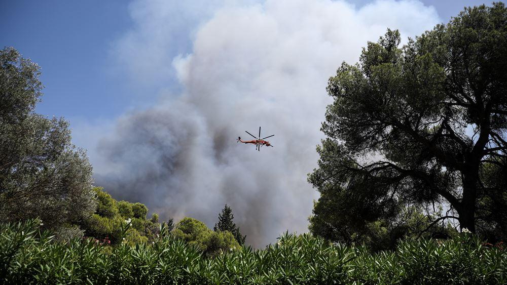 Λέκκας: Τι οδήγησε στη μεγάλη φωτιά στη Βαρυμπόμπη