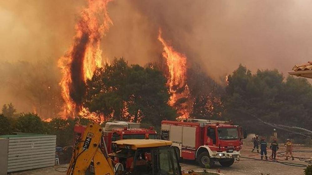 Λακωνία: Πυρκαγιά σε δασική περιοχή στο Γεράκι του Δήμου Ευρώτα