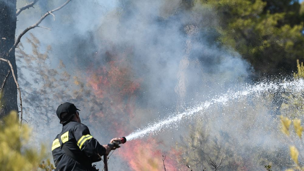 Χωρίς ενεργό μέτωπο αλλά με διάσπαρτες καύσεις η πυρκαγιά στη Λευκίμη Σουφλίου