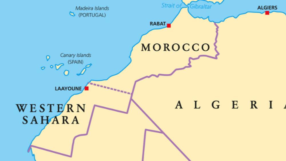 Μαρόκο: Οι καταστροφικές πυρκαγιές εξαφάνισαν πάνω από 7.000 στρέμματα δάσους σε 3 μέρες