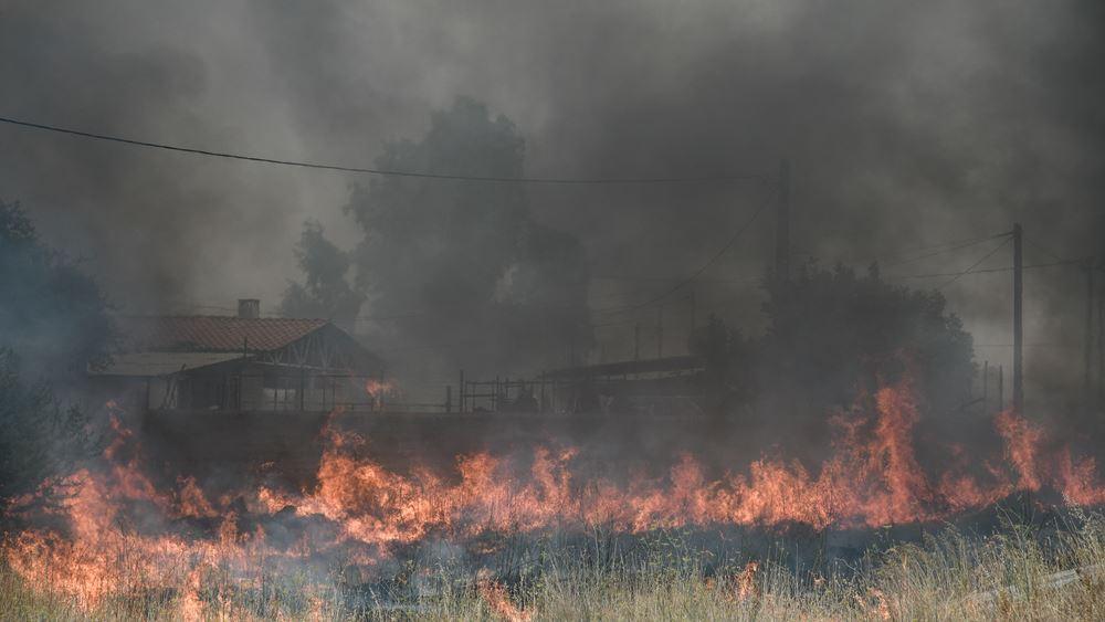 Τρίπολη: Αρκετά δύσκολη η κατάσταση με τη φωτιά στη Γορτυνία, καλύτερη παραμένει η εικόνα στο δήμο Μεγαλόπολης