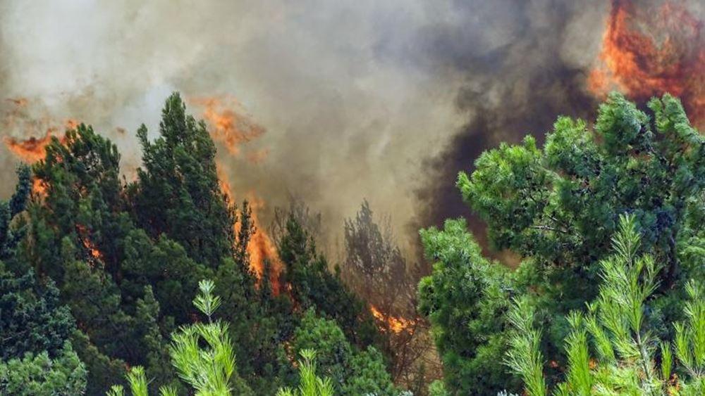 Πολύ υψηλός κίνδυνος πυρκαγιάς (κατηγορία κινδύνου 4) αύριο για την Περιφέρεια Νοτίου Αιγαίου
