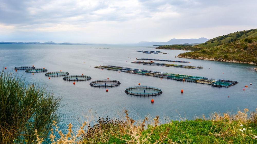 """""""Σωσίβιο"""" 25 εκατ. ευρώ στις υδατοκαλλιέργειες"""