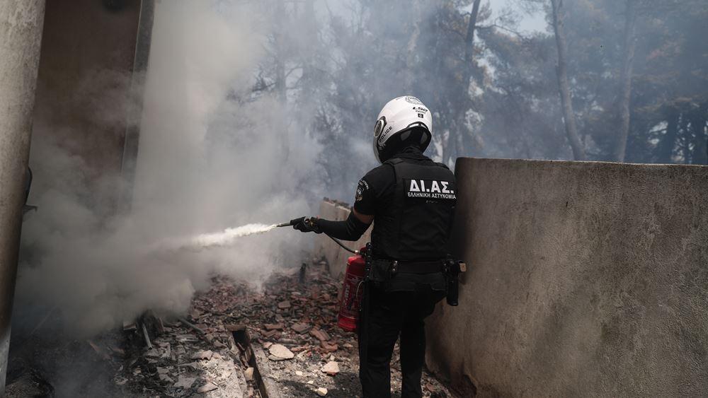 Ποινική δίωξη σε βάρος του 64χρονου μελισσοκόμου για την πυρκαγιά στην Σταμάτα