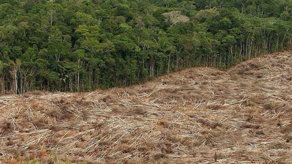 Βραζιλία: Ξεπέρασε τα 10.000 τ.χ η επιφάνεια του τροπικού δάσους του Αμαζονίου που αποψιλώθηκε σε ένα έτος
