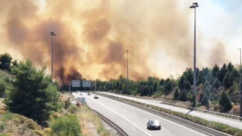Φωτιά στο Μαρτίνο: Η πυροσβεστική ερευνά το ενδεχόμενο εμπρησμού