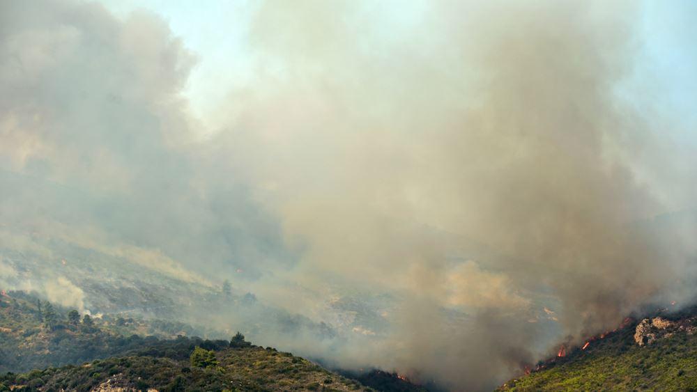 Υπό έλεγχο η φωτιά στο Αχλαδόβουνο της Ξάνθης