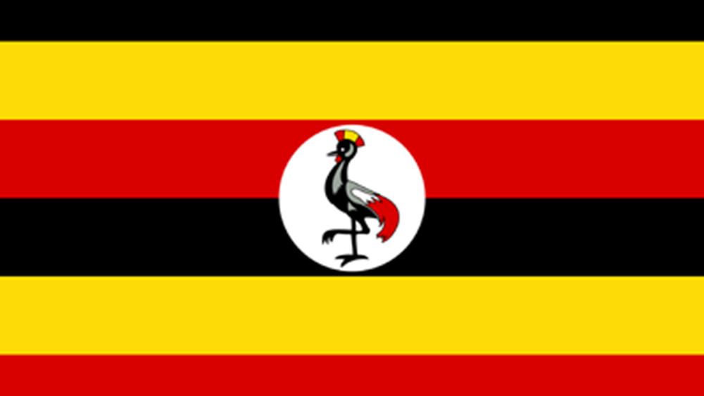 """Ουγκάντα: Ο Μπόμπι Γουάιν υποστηρίζει πως οι εκλογές στιγματίσθηκαν από """"βία και νοθεία"""""""