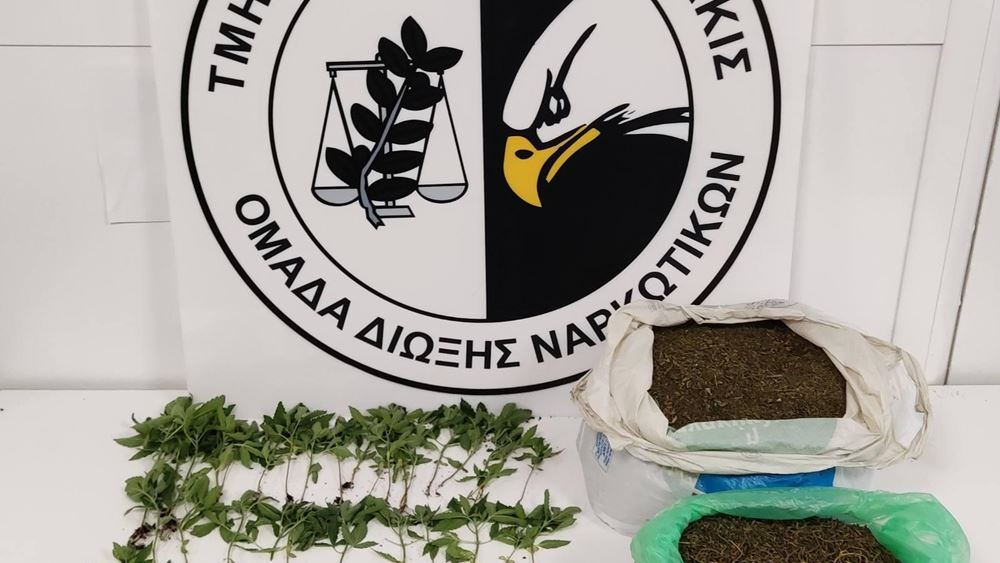 Κιλκίς: Δενδρύλλια κάνναβης και 2,5 κιλά κάνναβη εντοπίστηκαν σε σπίτι