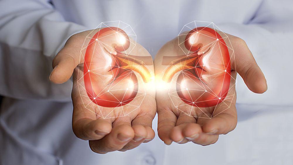 Καρκίνος του νεφρού: Τα συμπτώματα, οι παράγοντες κινδύνου και η νέα θεραπεία
