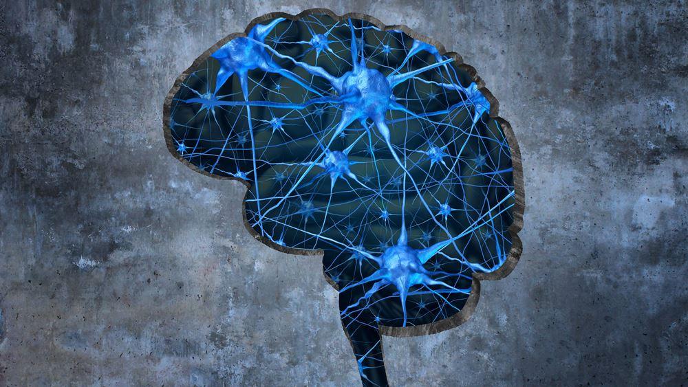 Τα παράδοξα του εγκεφάλου
