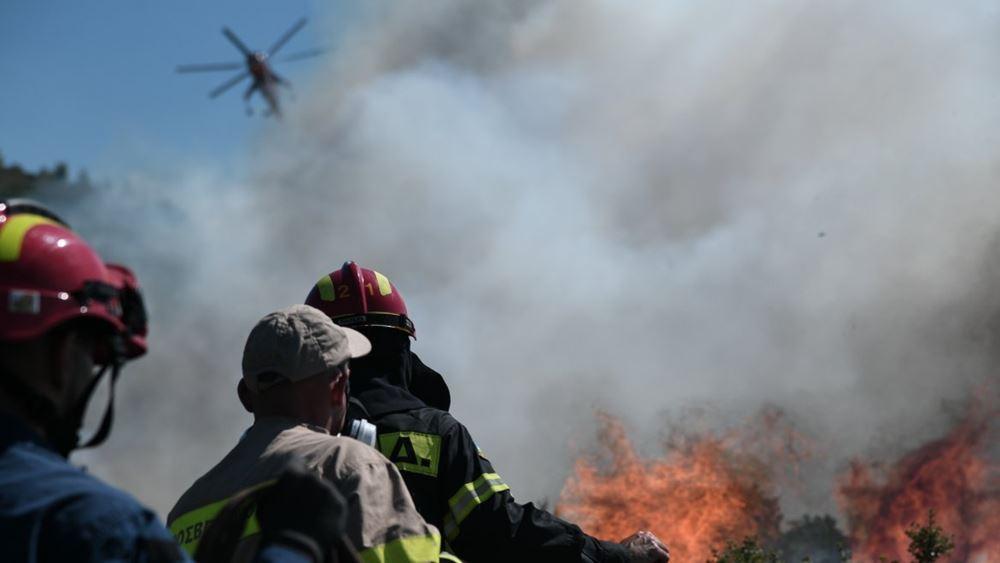 ΓΓΠΠ: Πολύ υψηλός κίνδυνος πυρκαγιάς αύριο για πολλές περιοχές της χώρας