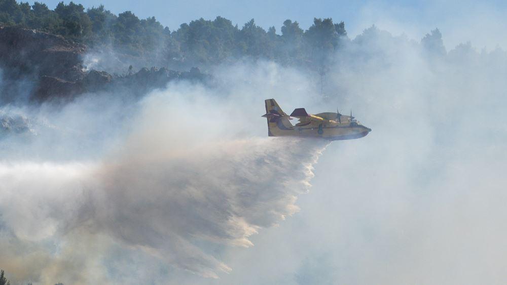 Εύβοια: Μέσα από τη χαράδρα η μάχη των πυροσβεστών ενάντια στη φωτιά