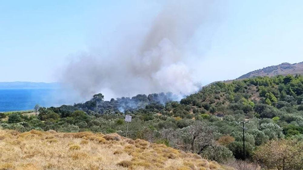 Λέσβος: Μεγάλη φωτιά στην περιοχή Εφταλού