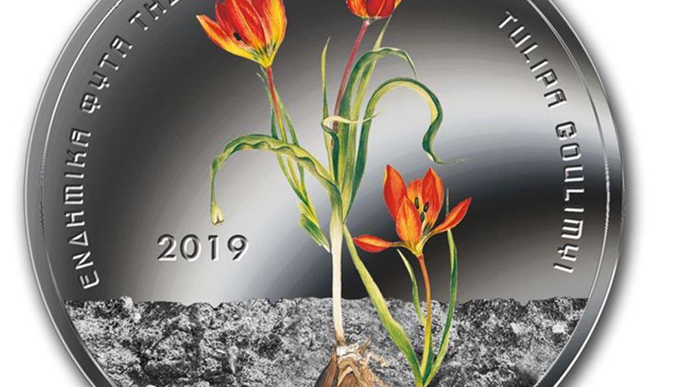 ΤτΕ: Παρουσίαση του Νομισματικού Προγράμματος 2019