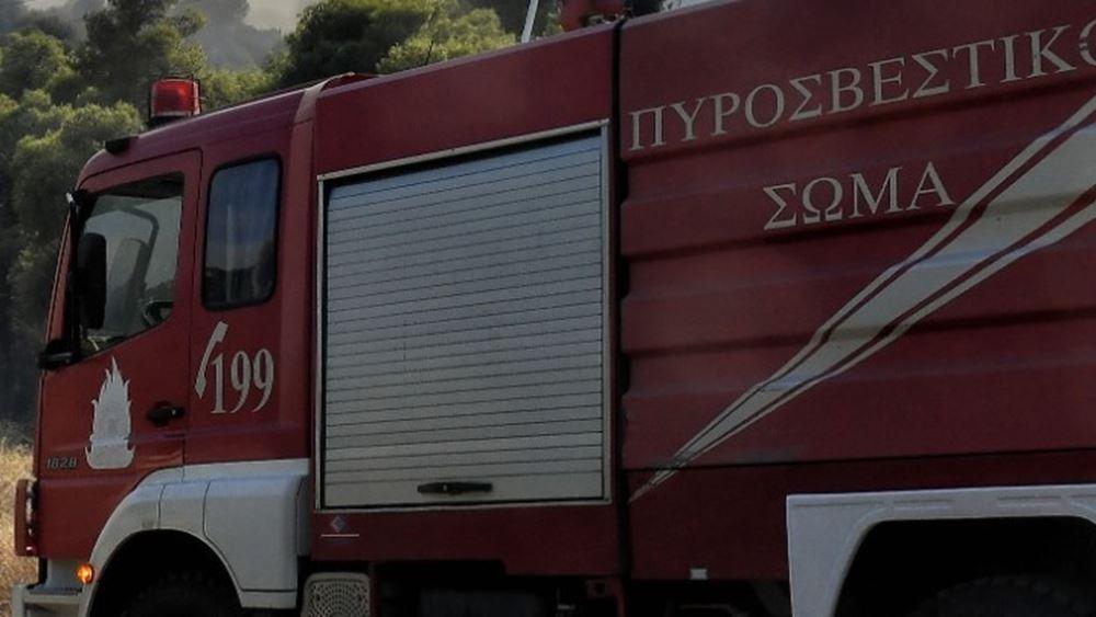 Έξι φωτιές σε Μάνδρα και Πόρτο Γερμενό - Κινητοποίηση της Πυροσβεστικής