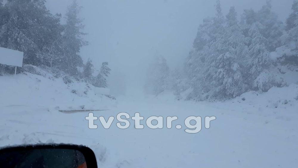 Εύβοια: Θαμμένη στο χιόνι και χωρίς ρεύμα η Σέττα Ερέτριας