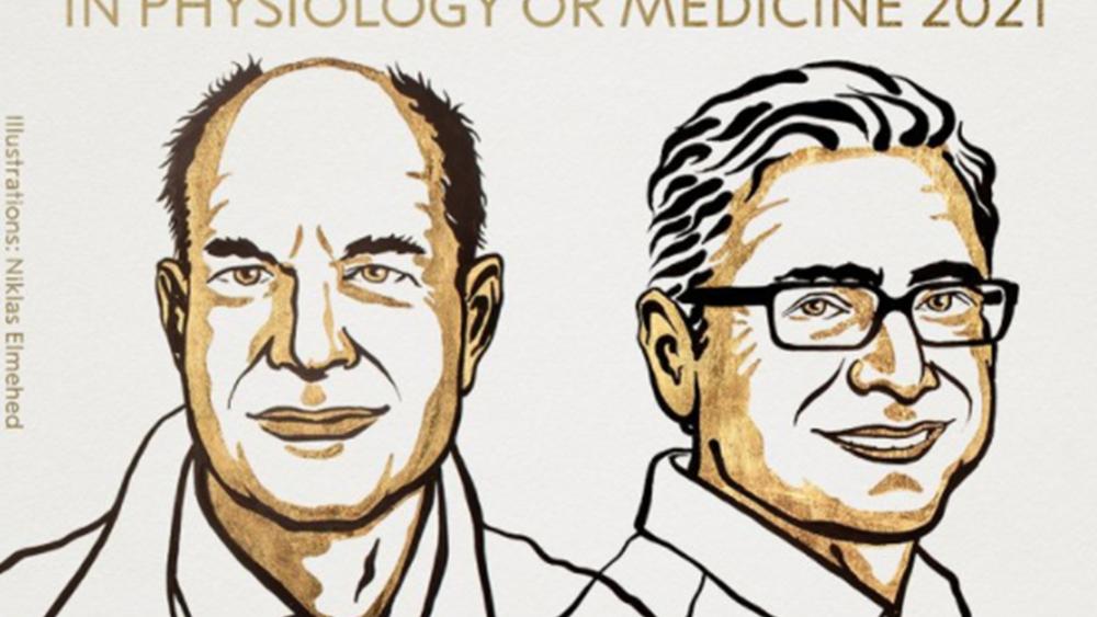 Στους Ντ. Τζούλιους και Α. Παταπουτιάν το Νόμπελ Ιατρικής 2021