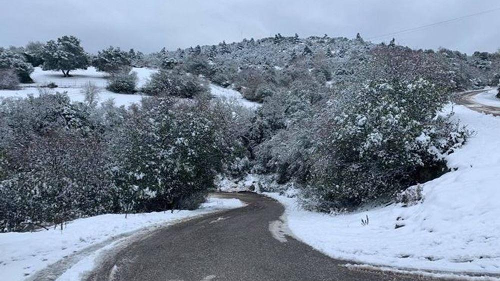 ΕΜΥ για Μήδεια: Μία από τις εντονότερες των τελευταίων 40 ετών η χιονόπτωση που έπληξε τη χώρα