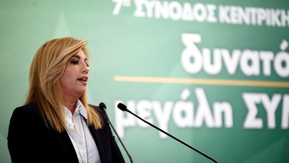 Συνεδρίαση ΠΑΣΟΚ: Το ΚΙΝΑΛ είναι μονόδρομος, λέει η Γεννηματά - Πυρά από Ανδρουλάκη
