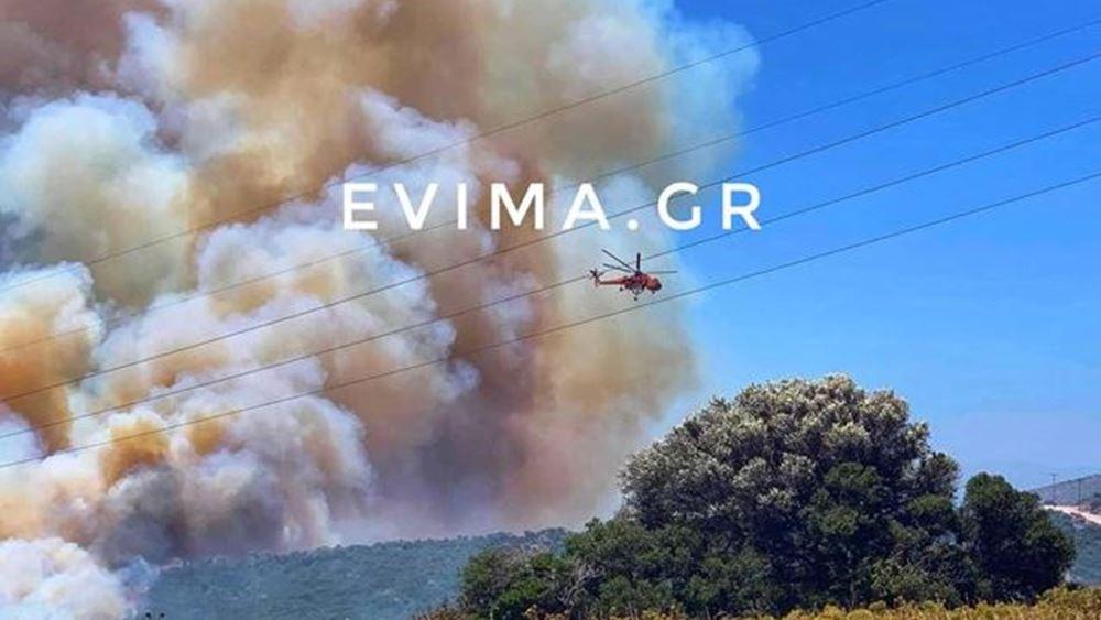 Φωτιά στην περιοχή Ραπταίοι στον δήμο Καρύστου
