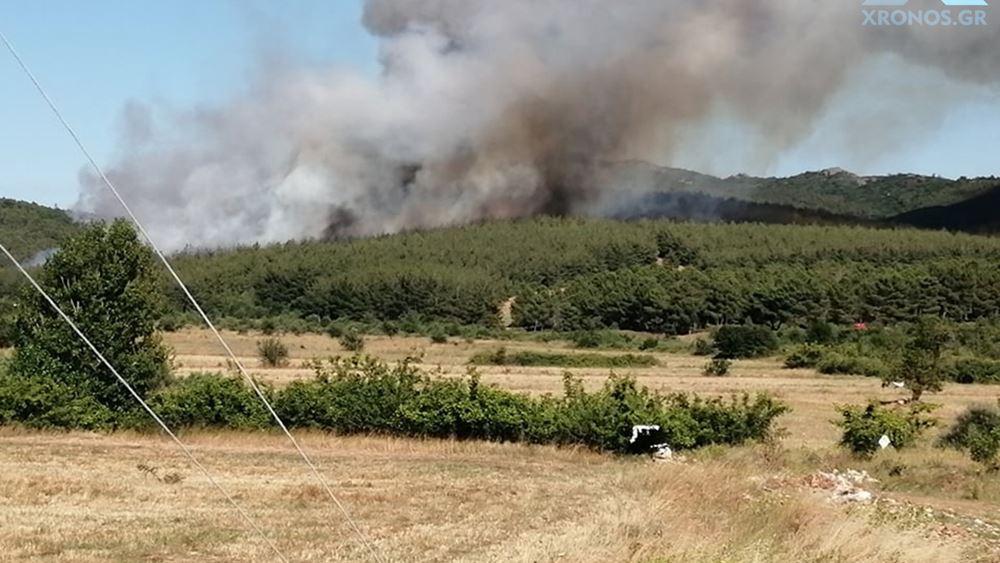 Μεγάλη φωτιά στις Σάπες Ροδόπης: Ενισχύονται οι πυροσβεστικές δυνάμεις - Εκκένωση οικισμού