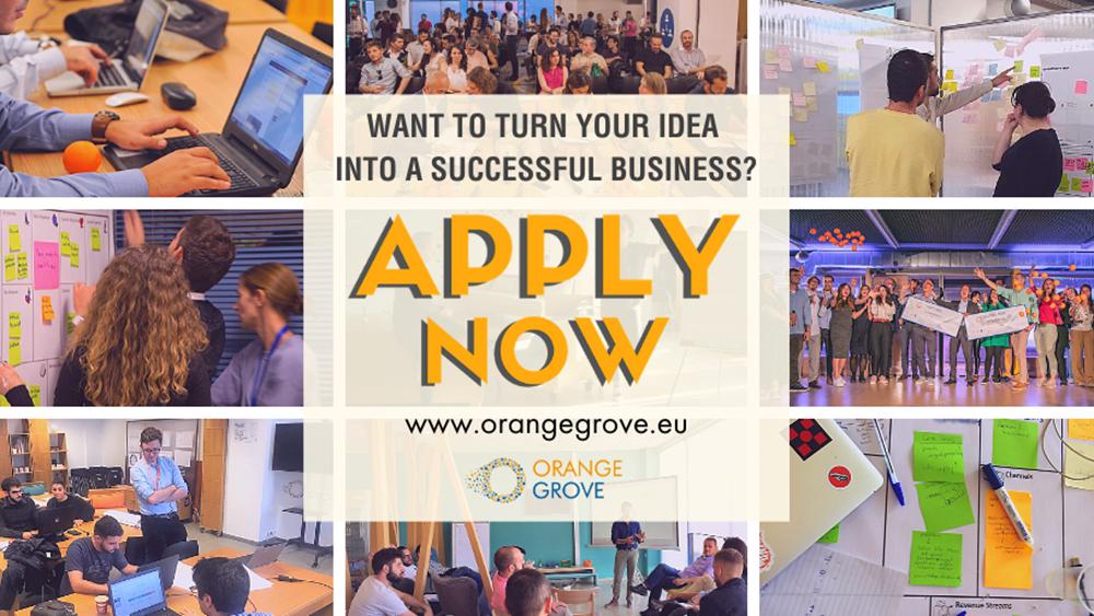 online Incubation πρόγραμμα του Orange Grove