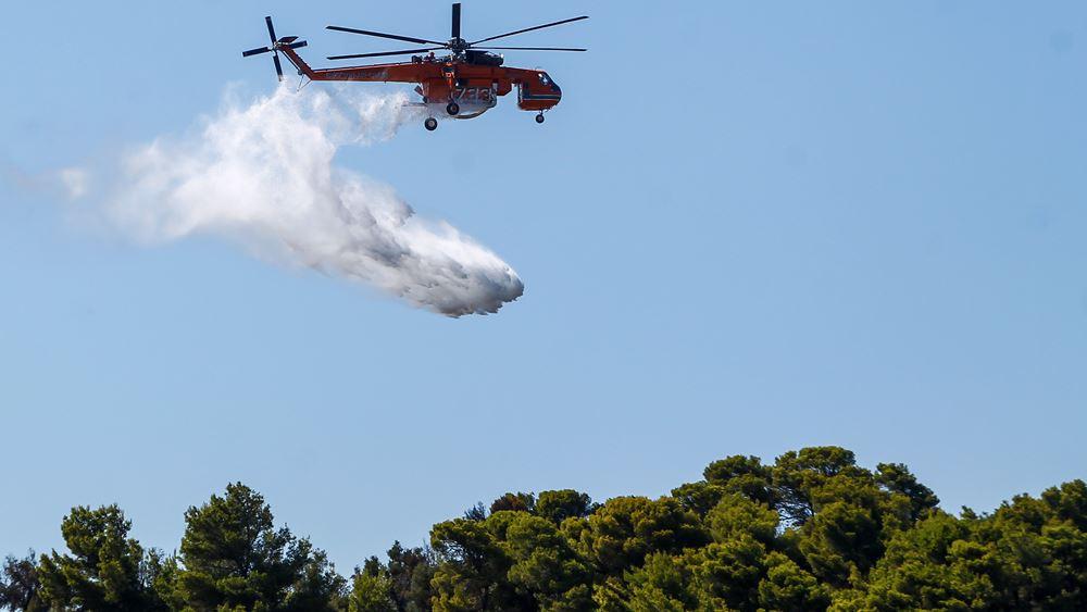 Μεγάλη πυρκαγιά ξέσπασε στην Τανάγρα